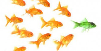 What does it mean to be an 'Authentic leader'?